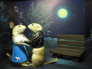 Two stuffed gophers sharing a romantic moment under the moonlight